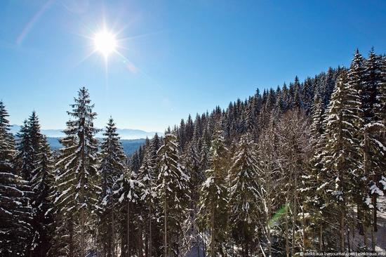 Picturesque landscapes of Carpathian Mountains view 4