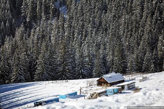 Picturesque landscapes of Carpathian Mountains view 6