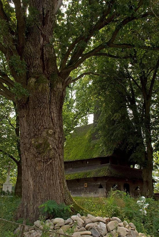 Wooden Gothic church, Zakarpattia region, Ukraine view 2