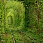 "Beautiful ""Tunnel of Love"" in Rivne oblast"