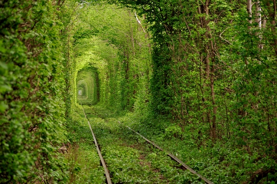 Tunnel of Love, Rivne oblast, Ukraine view 1