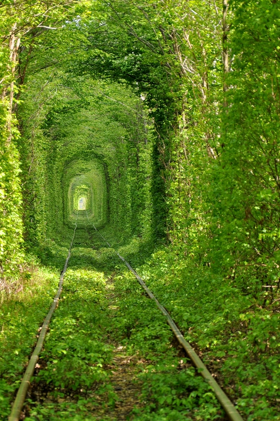 Tunnel of Love, Rivne oblast, Ukraine view 2