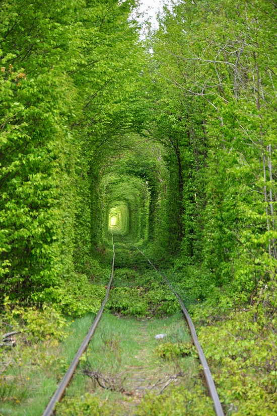 Tunnel of Love, Rivne oblast, Ukraine view 3