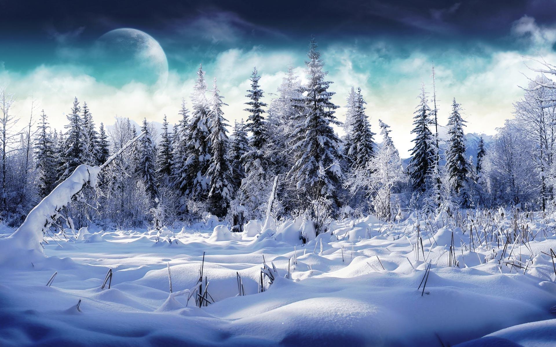 December · 2011 · Ukraine travel blog