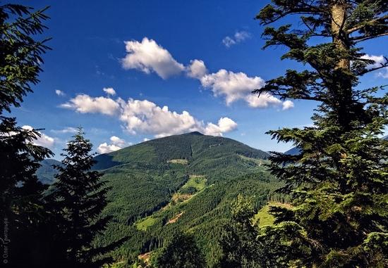 Ukrainian Carpathians landscape 5