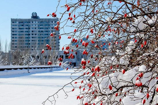 Snow-covered Pripyat, Ukraine view 10