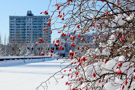 Snow-covered Pripyat, Ukraine view 10