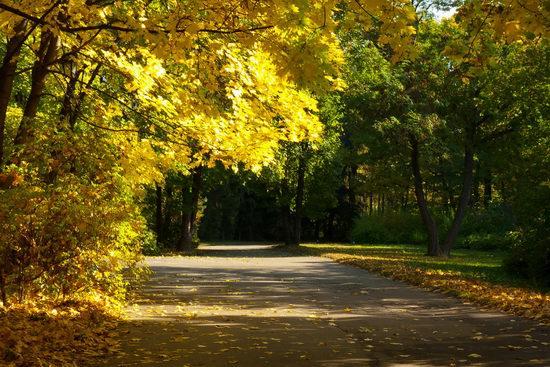 Sofiyivka dendrological park, Uman, Ukraine view 4