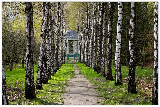 Folk architecture and life museum, Ukraine view 13