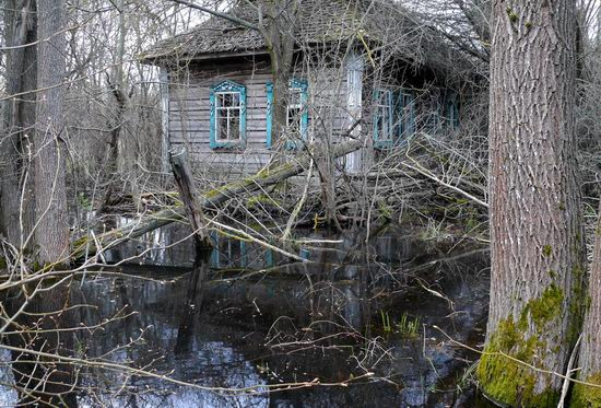 Spring in the Chernobyl exclusion zone, Ukraine view 11
