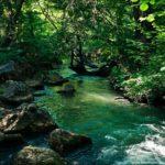 Picturesque sceneries of Chernaya River near Sevastopol