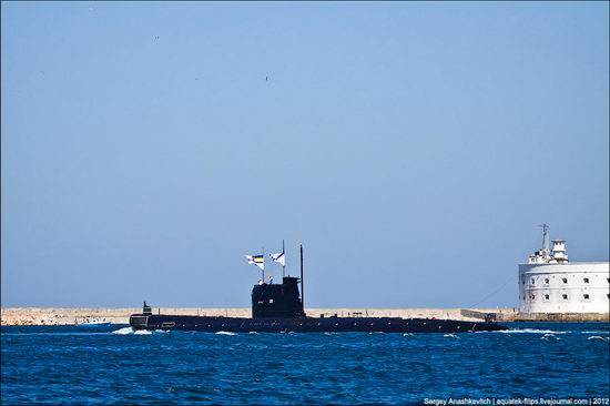 The parade on the day of the Navy in Sevastopol photo 18