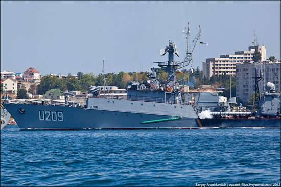 The parade on the day of the Navy in Sevastopol photo 21