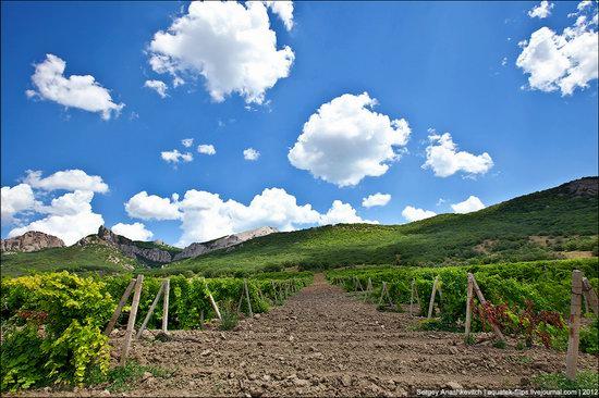 Picturesque landscapes of Crimea, Ukraine photo 14
