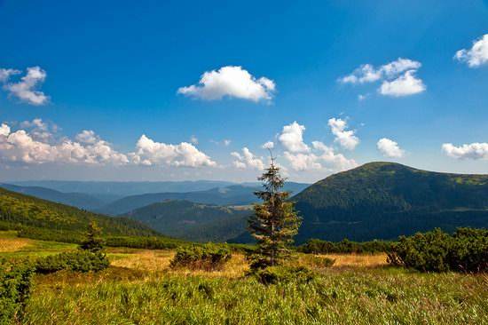 Zakarpattia region, Ukraine landscapes photo 17