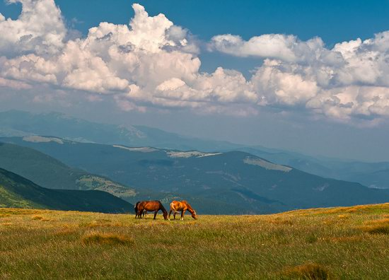 Zakarpattia region, Ukraine landscapes photo 22