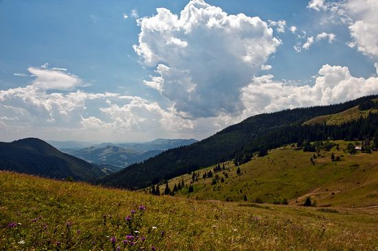 Zakarpattia region, Ukraine landscapes photo 5