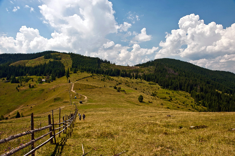 Picturesque Landscapes Of Zakarpattia Region & 183 Ukraine