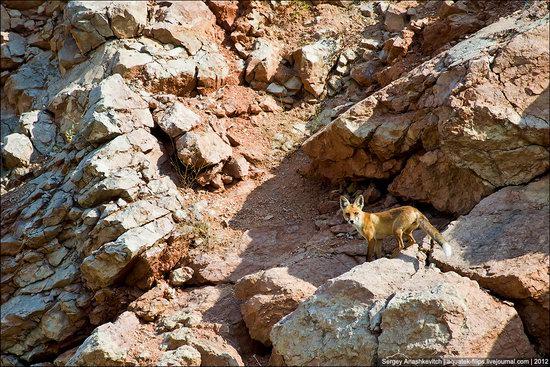 Picturesque abandoned quarry near Sevastopol, Crimea, Ukraine photo 13