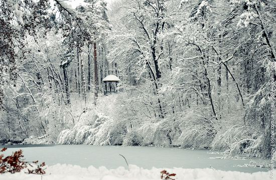 Snowy Alexandria park, Bila Tserkva, Ukraine photo 2