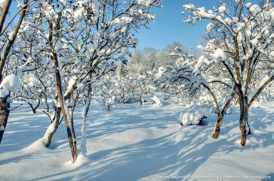 Snowy Alexandria park, Bila Tserkva, Ukraine photo 20
