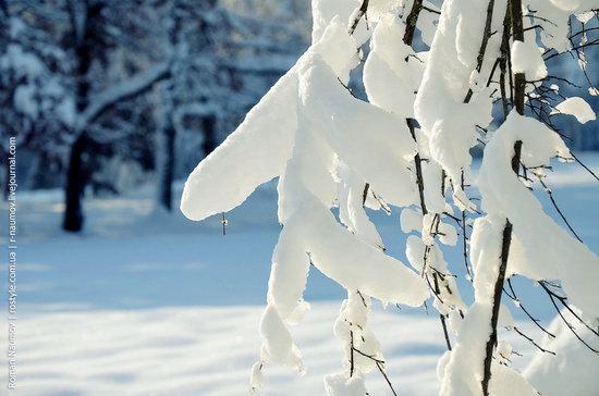 Snowy Alexandria park, Bila Tserkva, Ukraine photo 23