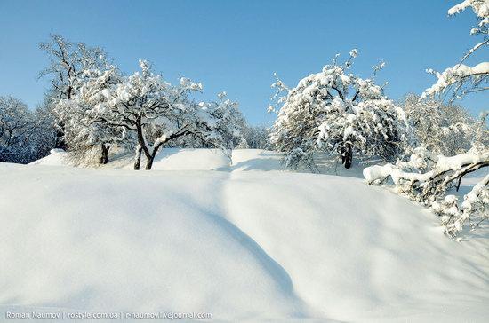 Snowy Alexandria park, Bila Tserkva, Ukraine photo 25