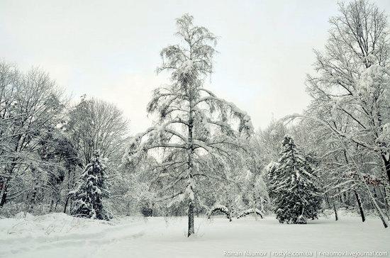 Snowy Alexandria park, Bila Tserkva, Ukraine photo 4
