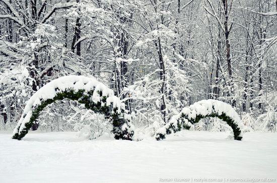 Snowy Alexandria park, Bila Tserkva, Ukraine photo 5