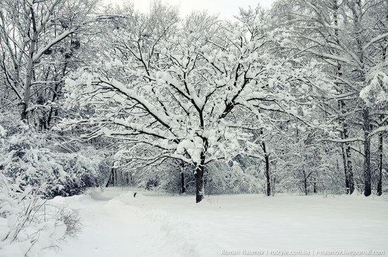 Snowy Alexandria park, Bila Tserkva, Ukraine photo 6