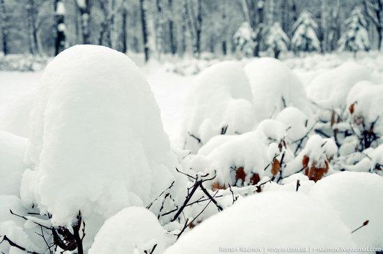 Snowy Alexandria park, Bila Tserkva, Ukraine photo 7