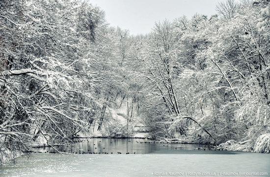 Snowy Alexandria park, Bila Tserkva, Ukraine photo 9