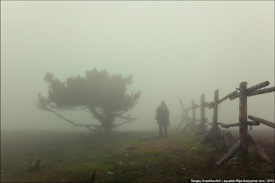 Ai-Petri - foggy and windy peak, Crimea, Ukraine photo 8