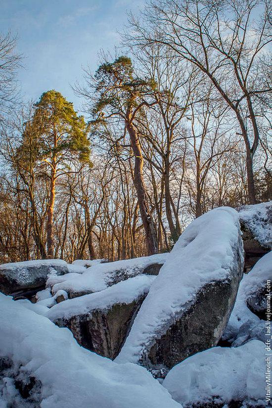 Snow-covered Sofiyivka park, Uman, Ukraine photo 11