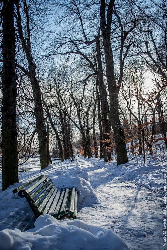 Snow-covered Sofiyivka park, Uman, Ukraine photo 3