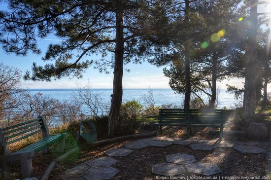 Winter Yalta, Crimea, Ukraine photo 13