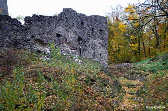 Nevitsky castle, Zakarpattia region, Ukraine photo 16