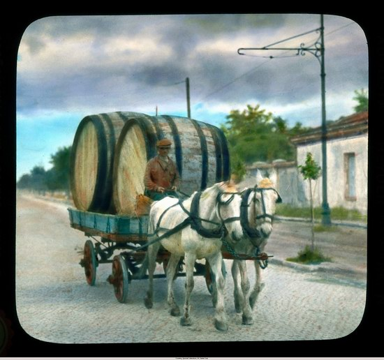 The color photos of Odessa in 1931 picture 16
