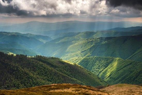 Spring in the Carpathian Mountains, Ukraine photo 11