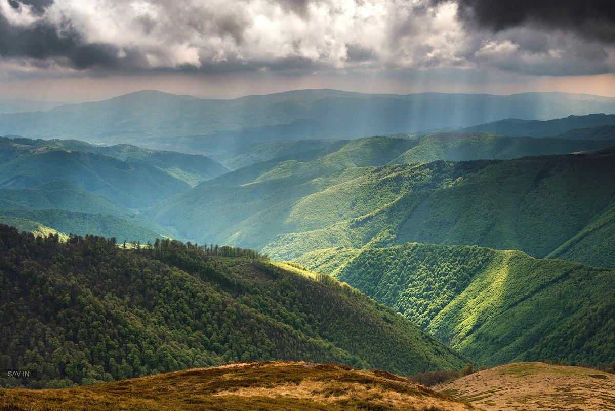 spring in the carpathian mountains ukraine travel blog