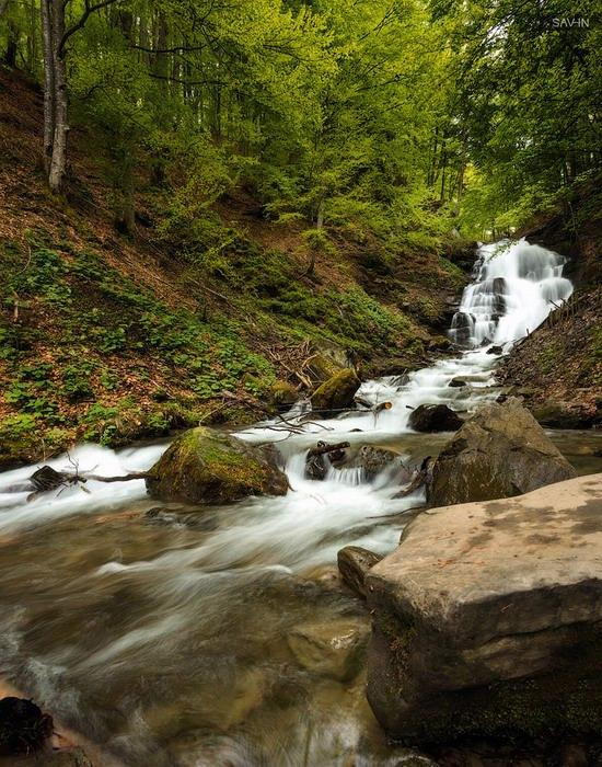 Spring in the Carpathian Mountains, Ukraine photo 15