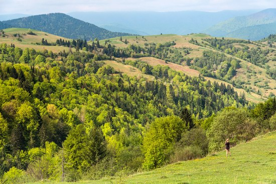 Spring in the Carpathian Mountains, Ukraine photo 16