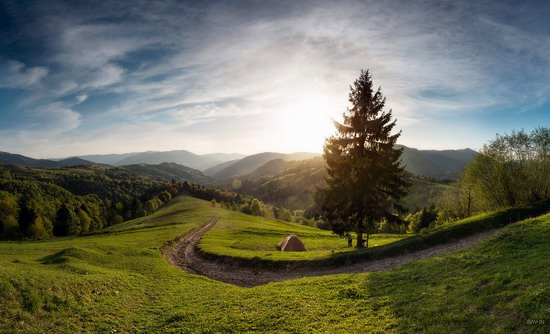 Spring in the Carpathian Mountains, Ukraine photo 19