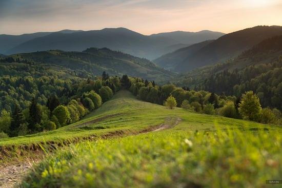 Spring in the Carpathian Mountains, Ukraine photo 20