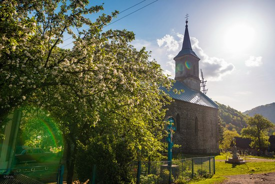 Spring in the Carpathian Mountains, Ukraine photo 4