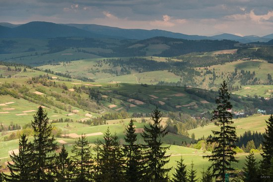 Spring in the Carpathian Mountains, Ukraine photo 9