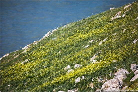 Opuksky Nature Reserve, Crimea, Ukraine photo 20