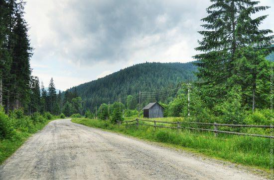 Goverlyansky Reserve - the Carpathian National Park, Ukraine photo 2