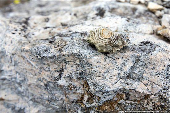 Belaya Skala, Natural Monument, Crimea, Ukraine photo 12