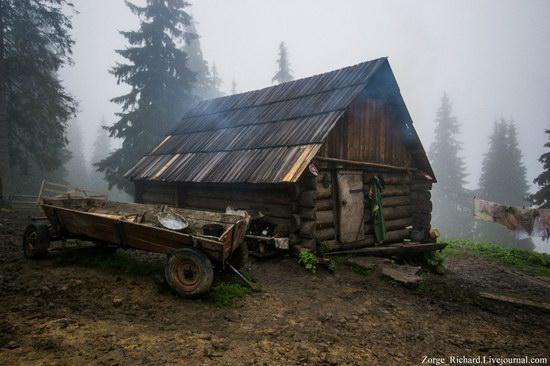Mystical beauty of the Crpathians, Ukraine photo 1